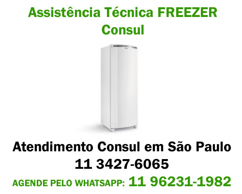 Assistência técnica Freezer Consul