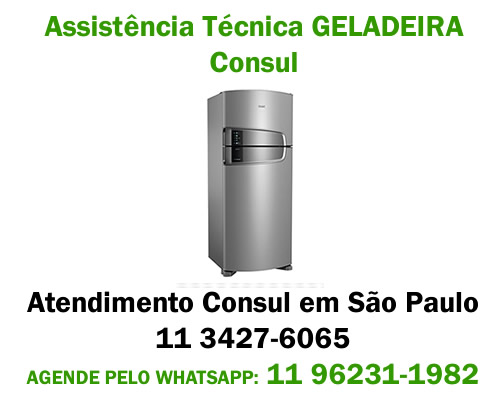 Assistência técnica geladeira Consul