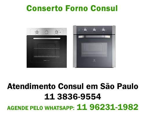 Conserto forno Consul