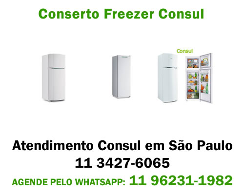 Conserto freezer Consul
