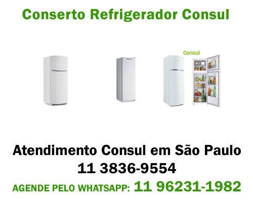 Conserto refrigerador Consul
